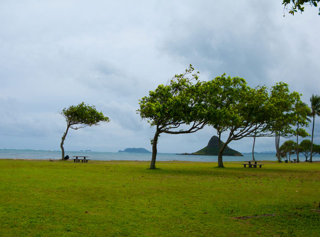 Chinaman's Hat.